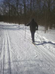 Cross Country Skiing in Forest Preserve